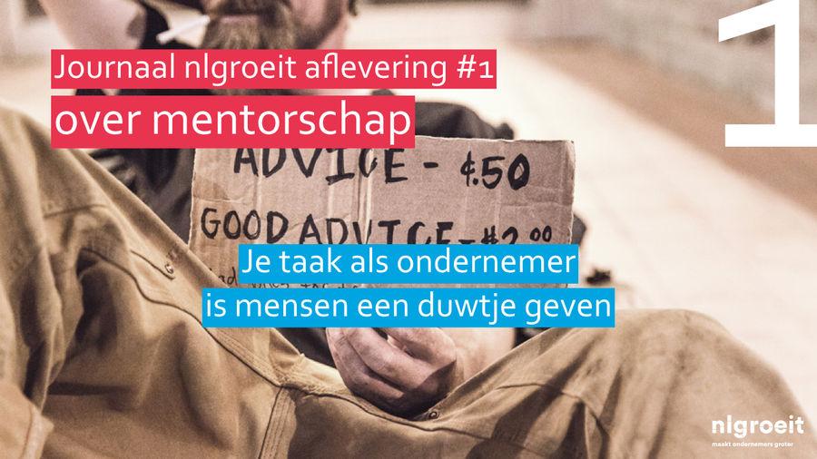 nlgroeit - journaal 1 mentorschap